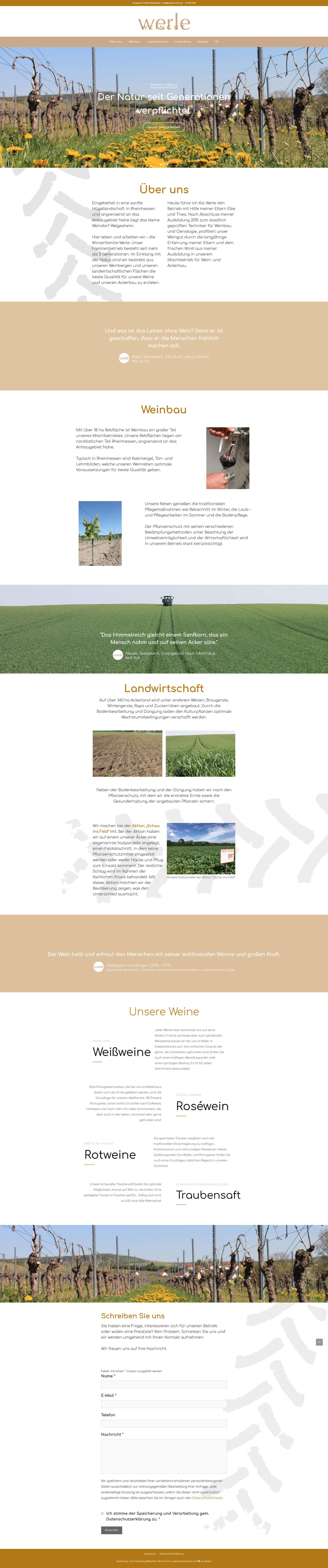 weingut-werle.net - Screenshot der Webseite 2019
