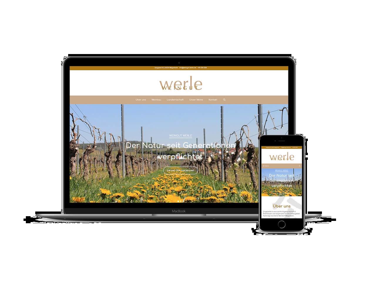 Projektwebseite Werle - martineich.de